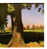 Tree in Park - Oil on canvas - Claire Fishman